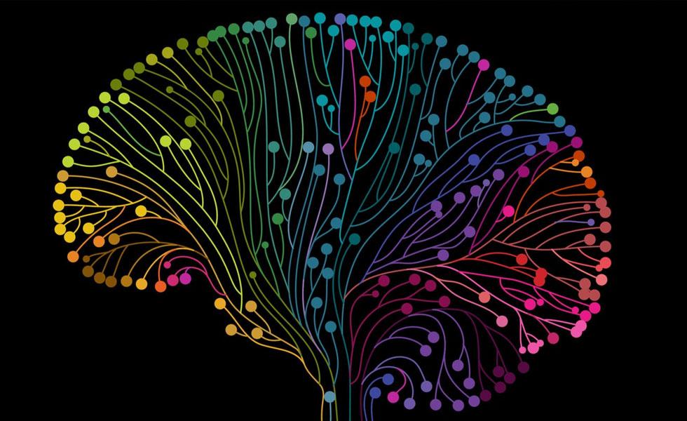 Pic: rainbow coloured neurons in a brain