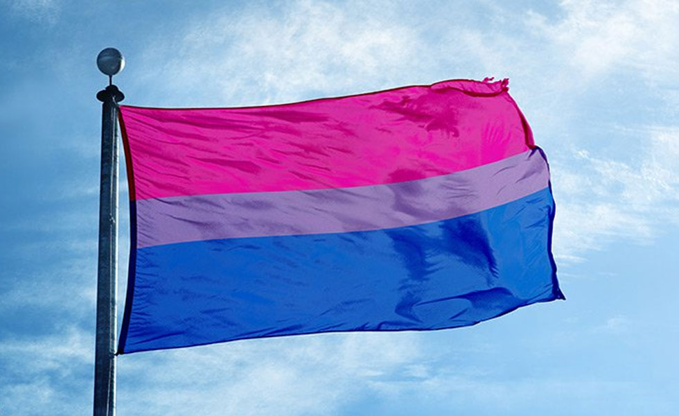 Photo: the bisexual flag flying